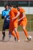 20. Spieltag 2012/2013: SV Sulgen - SC Lindenhof